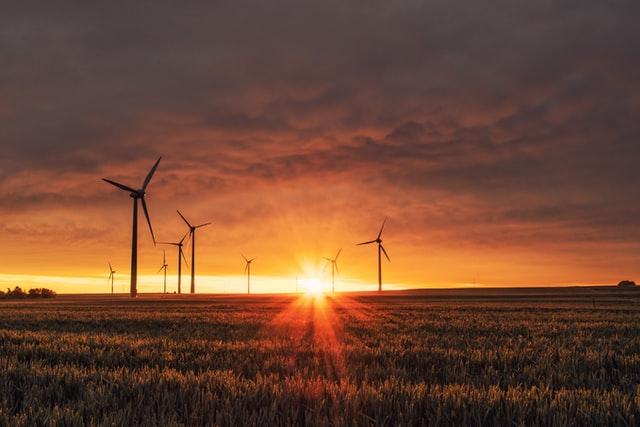 sustainability Business Force For Good free range entrepreneur
