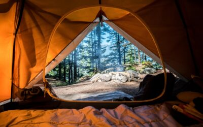 10 Camping Zoom Backgrounds For Your Next Conference Call